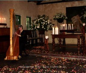 Professional Harpist for weddings or any occasion